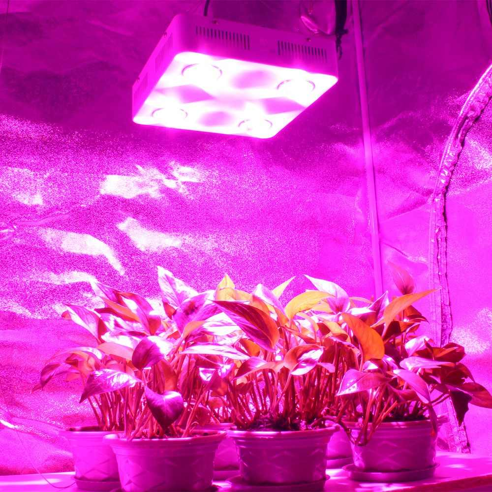 300 Вт 600 Вт COB светодиодный свет для выращивания полного спектра Крытый гидропонная теплица подсветка для рассады Замена НЛО HPS GREE растущая лампа