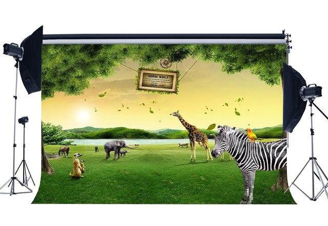 حديقة حديقة خلفية الحيوانات العالم الخلفيات زيبرا الزرافة الغابة غابة الأخضر العشب مرج خلفية