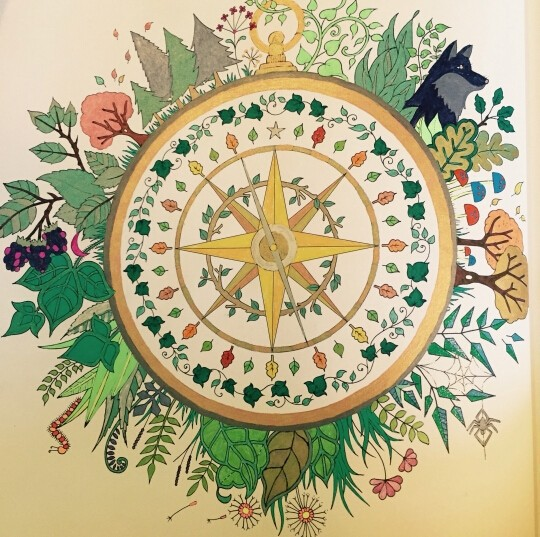 Enchanted Forest An Inky Treasure Hunt And Coloring Book For Children Adult Relieve Stress Relax Graffiti Painting Drawing In Books From Office