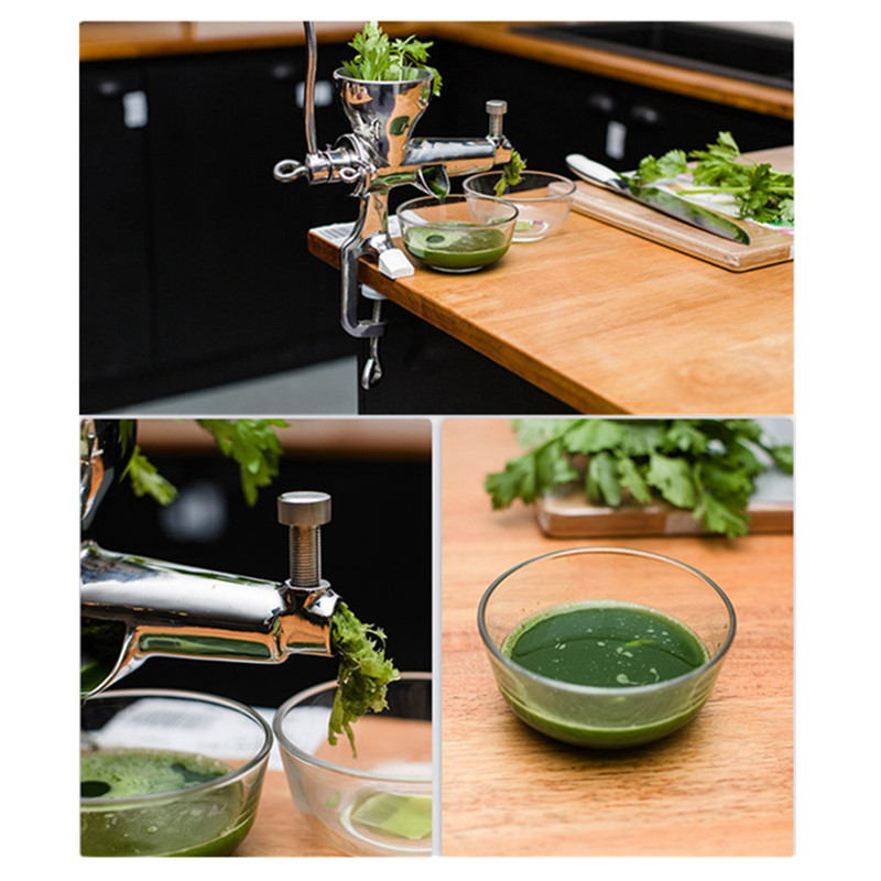 Stainless steel hand wheatgrass juicer mini manual auger slow wheat grass fruit vegetable juice extractor machine free shipping manual stainless steel wheatgrass juicer healthy wheat grass juicer machine wheat grass juice extractor