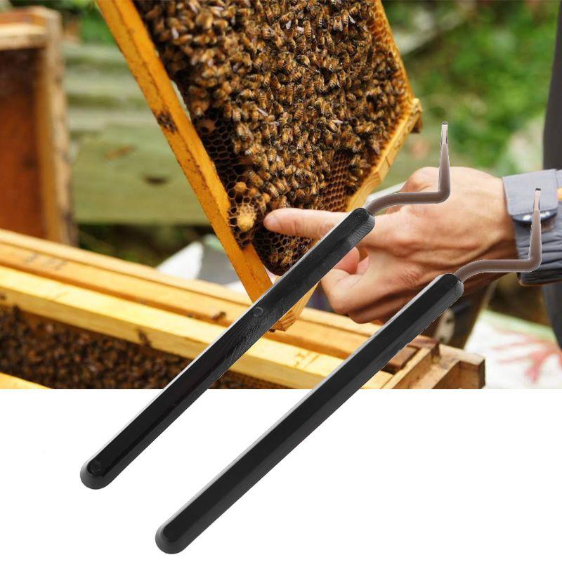2Pcs Hive Queen Rearing Plastic Bee Needle Beekeeping Stainless Steel Bee Grafting Tools-in Beekeeping Tools from Home & Garden