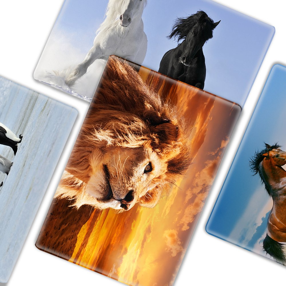 Animal Horse Penguin Polar Bear Sleeve Case for Macbook Pro 13 15 - Նոթբուքի պարագաներ - Լուսանկար 5