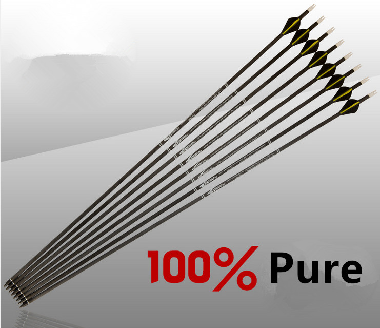 12Pcs Pure Carbon Arrow 80cm 31 Archery Arrows Replacable Arrowheads Spine 300, 400 for Compound Bow and Recurve Bow аккумуляторная батарея для canon digicare plc e10