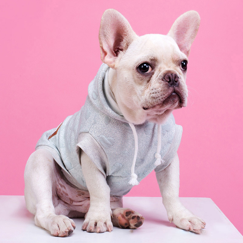 Fashion Pet Dog Hoodie Winter Dog Coat Pet Jacket Autumn Winter Pets Dogs Clothing Cotton Cat Pet Clothes For Dogs Bulldog Pug