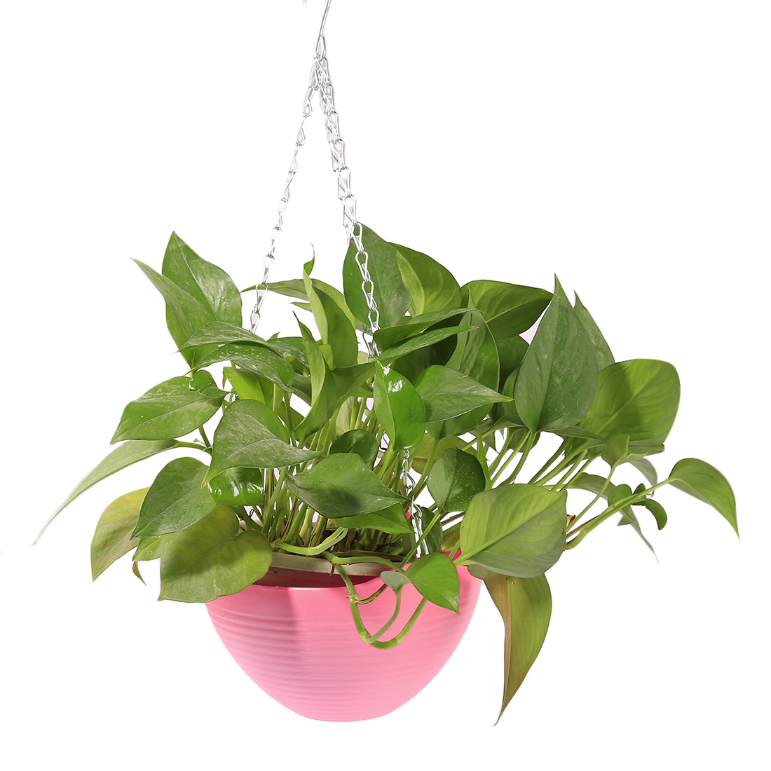 VICTMAX Hanging Flower Plant Pot Chain Plastic Basket Planter Holder Patio Home/Office Decoration Pink Blue Hot Sale ...