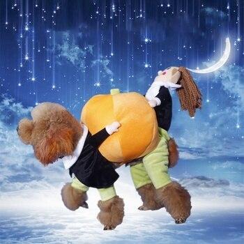 Funny Pumpkin Cosplay Costume  3