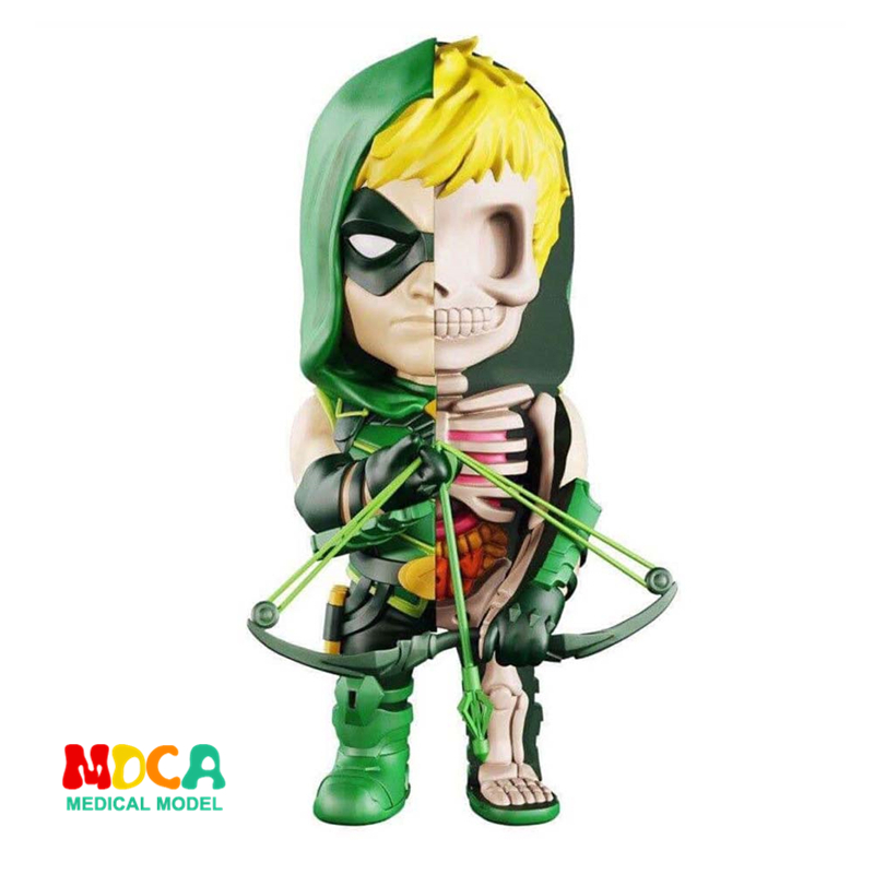 Green Arrow 4D XXRAY master Mighty Jaxx Jason Freeny anatomy Cartoon ornament