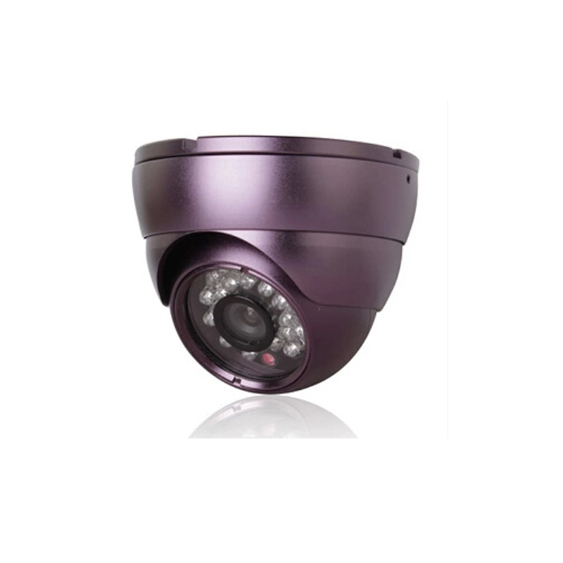 ФОТО 48VPOE HD 720P 1.0MP IP Camera Purple metal Dome  Indoor Security Network P2P RTSP FTP Onvif 2.1 24IR Night Vision