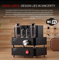 APPJ Smart WiFi 6J1 6P4 Vacumm Tube Amplifier Mini HiFi Stereo Integrated Desktop Amp Finished Product