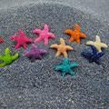 40 Unids Colorido Mini Starfish Deseando Botellas Micro Paisaje Home Decors Inferior Durable y Retener el Agua Depigment Enviar EN AL AZAR