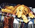 Рисовать Краски ing по номерам ленивый пес DIY масла Краски ing по номерам раскраски по номерам Краски по количеству уникальный подарок холст Краски ing - фото