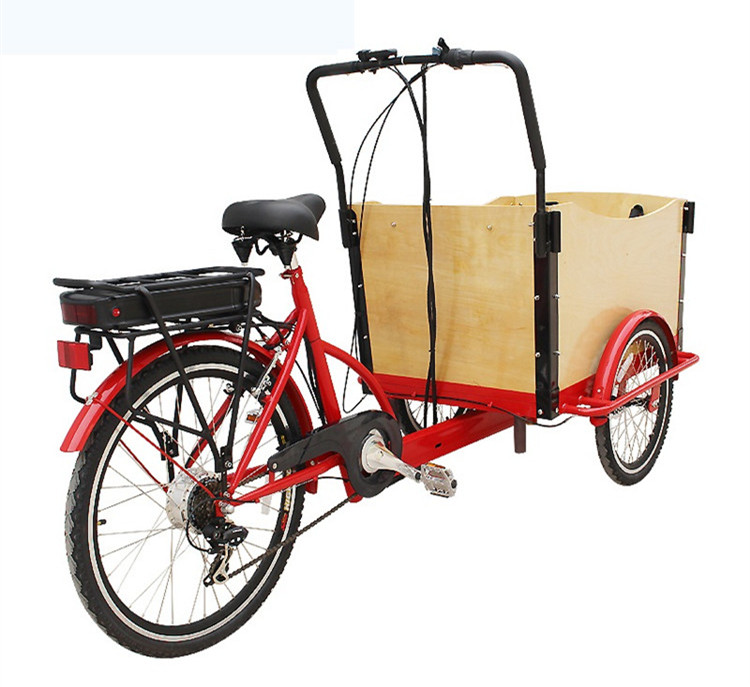 3-wheels-electric-cargo-bike-with-ce (5)_
