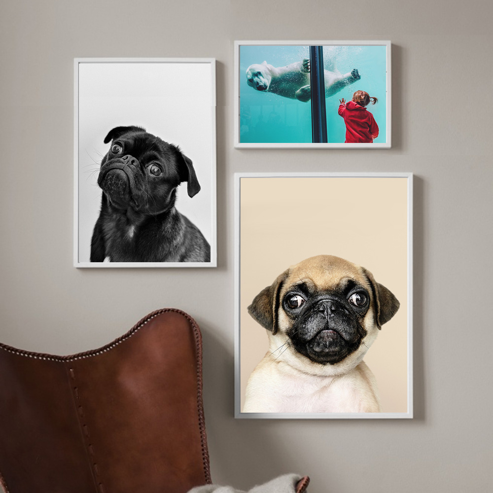 Pug Dog Animal Modern Nordic Posters And Prints Aquarium Wall Art Canvas Painting Child Room Wall Pictures For Living Room Decor in Painting Calligraphy from Home Garden