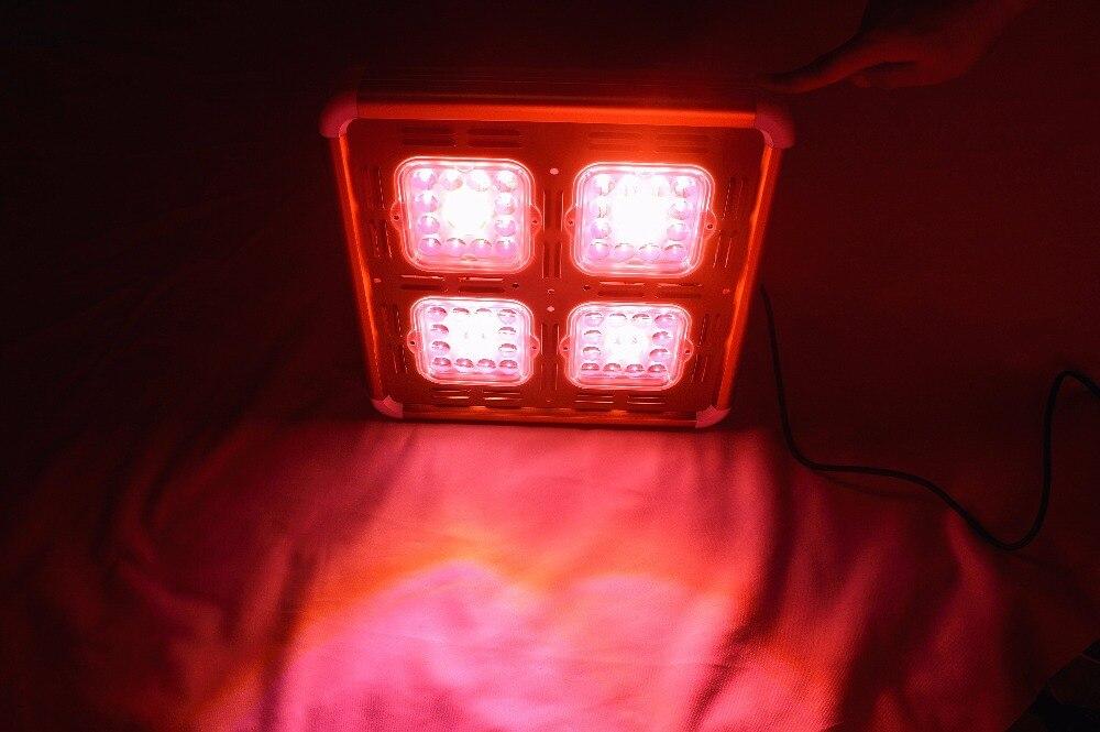 Купить с кэшбэком Venus 400W 900W 1600W LED grow light COB+5W CREE sunlight full spectrum 370-850nm plant lamp indoor grow herbs flowers crops