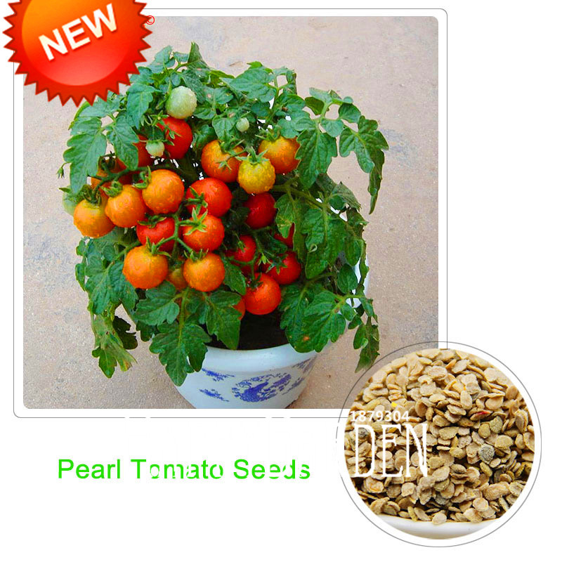Hot Sale!Red Pearl Tomato Seeds,Fruits and Vegetables Potted Mini Tomato Seeds Balcony for Home Garden 100 pcs/Pack,#VGI3OV