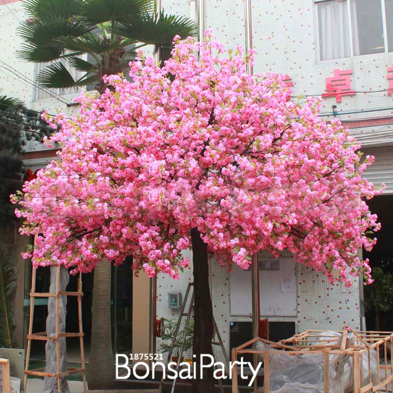 Planta de flor de cerezo de los clientes compras en for Arboles para jardin japones