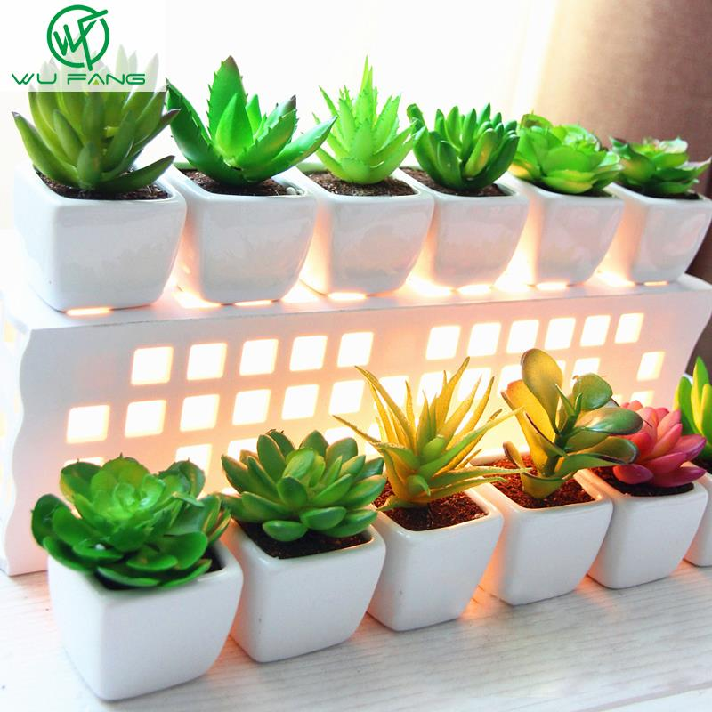 Mini Potted Plant Desktop Pot White Ceramic Basin
