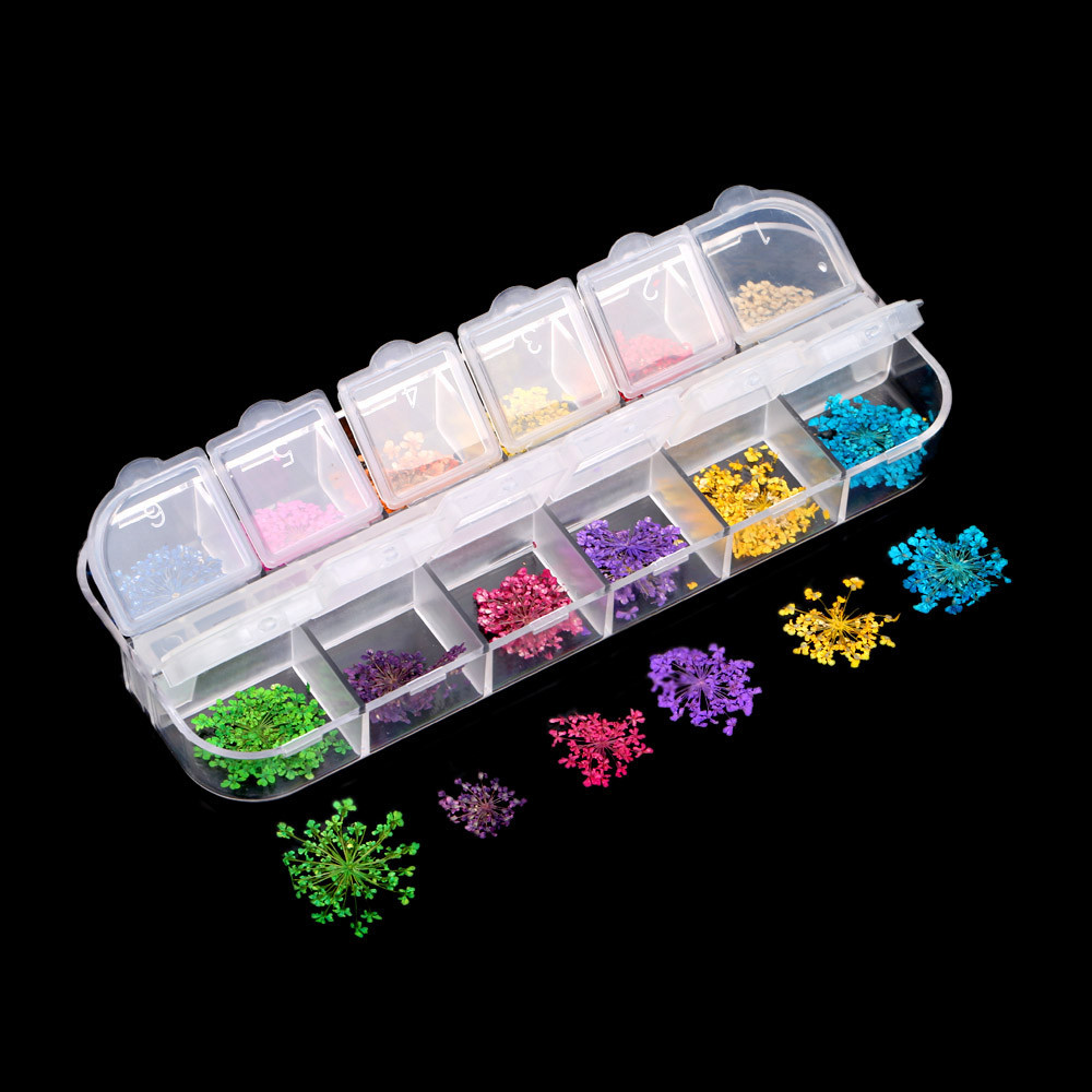 Image 2 - LKE 12 Color/Set  Nail Glitter Mixed Dried flowers Color Nail Modification for UV Gel Flakes Nail Art Decoration Sparkly DIY Tip-in Nail Glitter from Beauty & Health