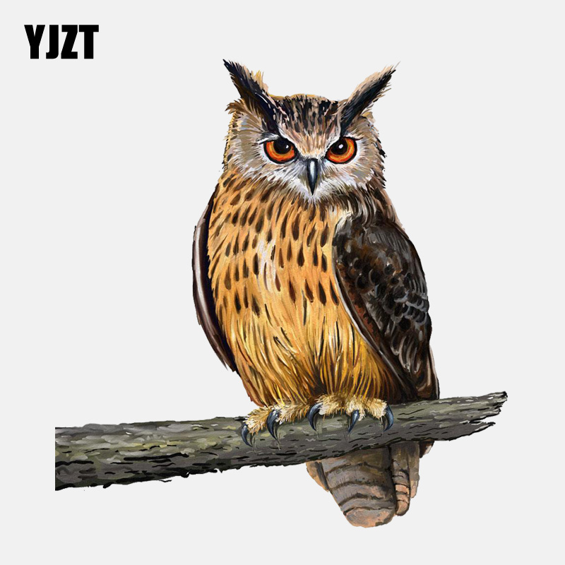 YJZT 15.2CM*15.8CM Owl Standing On A Branch PVC  Window Decoration Car Sticker 11-01331