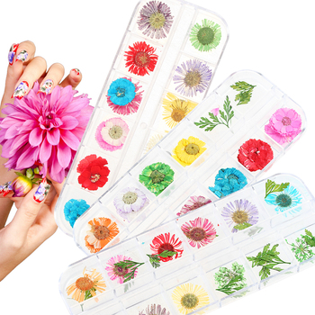 12 Color Mixed Real Dried Flower 3D Nail Art Decorations DIY Dry Floral Potpourri Slices Sticker Tips Beauty Manicure Decor Stickers & Decals