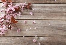 Laeacco Peach Blossom Wooden Board Scene Baby Children Photography Backdrop Customized Photographic Background For Photo Studio