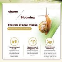 Anti Wrinkle Snail Cream 4