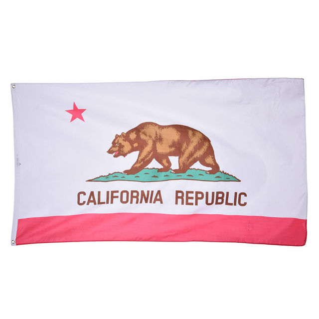 California State Flag for World Cup / Activity / Parade / Festival ...
