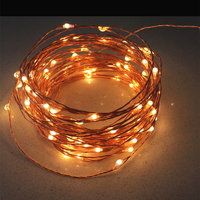 12V 20m 200 LED Outdoor Christmas Fairy Lights Warm White Copper Wire LED Starry Lights String