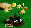 Mini dollhouse Mini Furniture Accessories Clay Flower Clay Handmade Beautiful Narcissus Garden