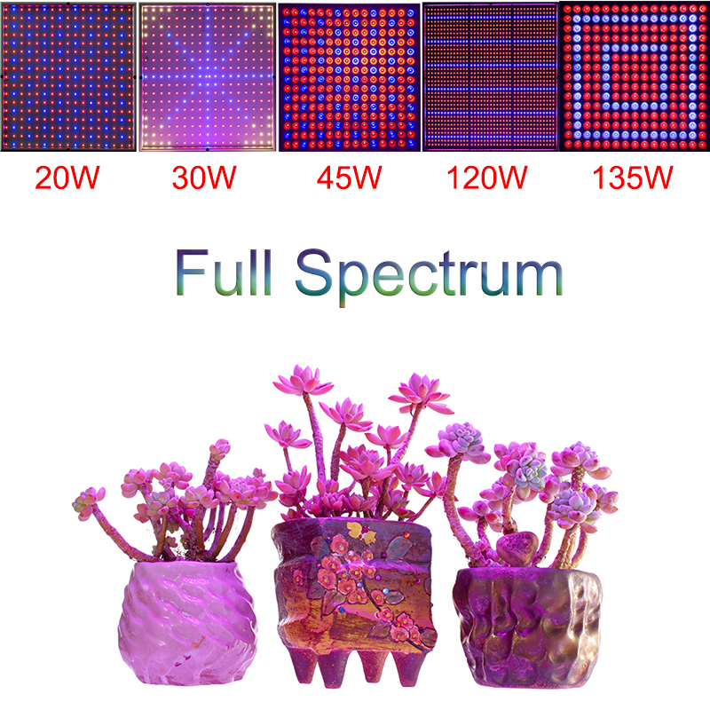 Full Spectrum AC85-265V 20W 30W 45W 120W 200W High Power SMD LED Grow Light Red/Blue For hydroponics and indoor plants