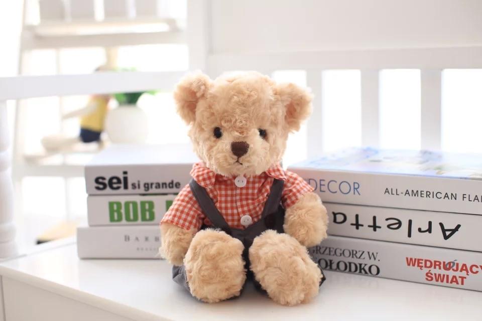 Plush Teddy Bear įvairiais drabužiais įdaryti gyvūnų žaislai 35cm aukščio dovanos vaikams nemokamai