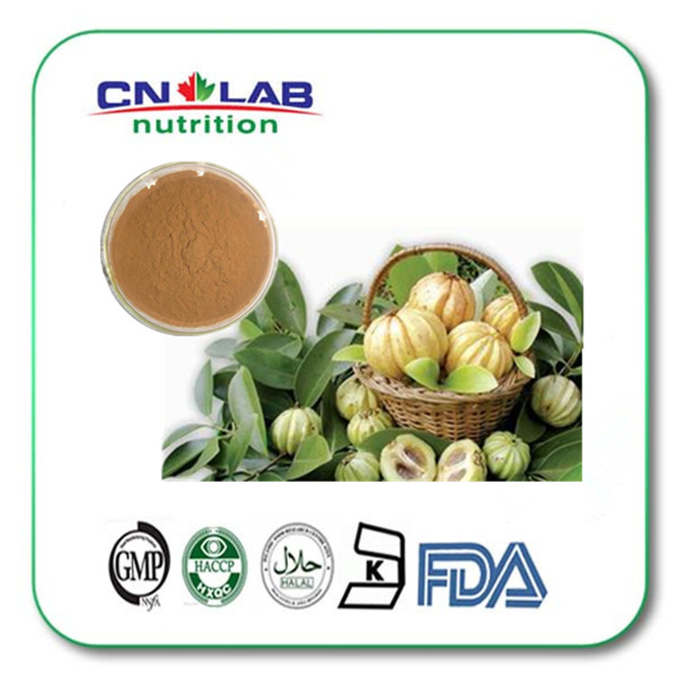 Professional Manufacture supply Garcinia cambogia Fruit Extract HCA 60% powder for weight loss 500g natural weight loss ingredients herbal powder extract for slimming healthily