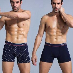 Image 4 - SRBONIOTOS ماركة 4 قطع الرجال الملابس الداخلية الرجال الملاكم ملابس داخلية قطنية الذكور الملاكمين Cueca 365 السروال الرجال سراويل داخلية