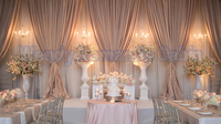 White wedding Backdrop with Coffee Swags 10ft x 20ft background drape Wholesale Stage curtain Wedding Decoration