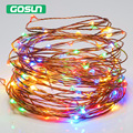 Powered by USB 10m Warm white/RBG 5V 100 leds Copper Wire  portable Night light lamp living room