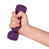 Home Lose Weight Women's Sport Dumbbell Yoga Fitness Equipment Women Fitness 0.5kg Dumbbells For Body Exercise Slimming