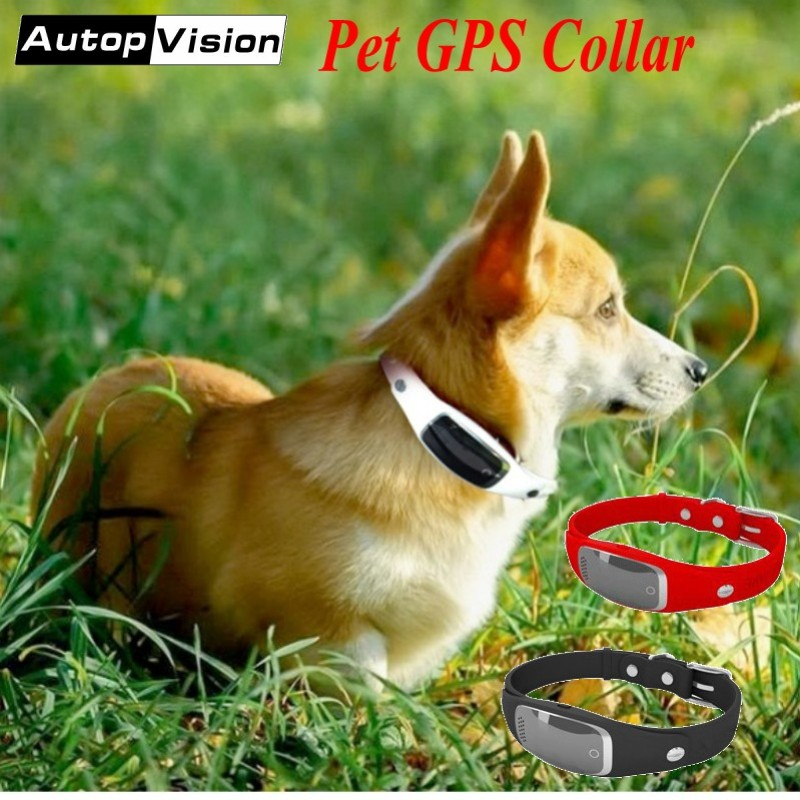 5pcs/lot Mini GPS Tracker Pet GPS Collar S1 Real time Tracking Global Locator for Cats Dogs Support iOS Andriod APP GPS Location 5pcs pet gps tracker v40 3g network waterproof mini gps tracker dog cat pet personal tracking locator ios andriod app gsm gprs