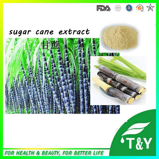 Pure natural Sugar Cane Extract from GMP Certified Manufacturer with bottom price 800g/lot