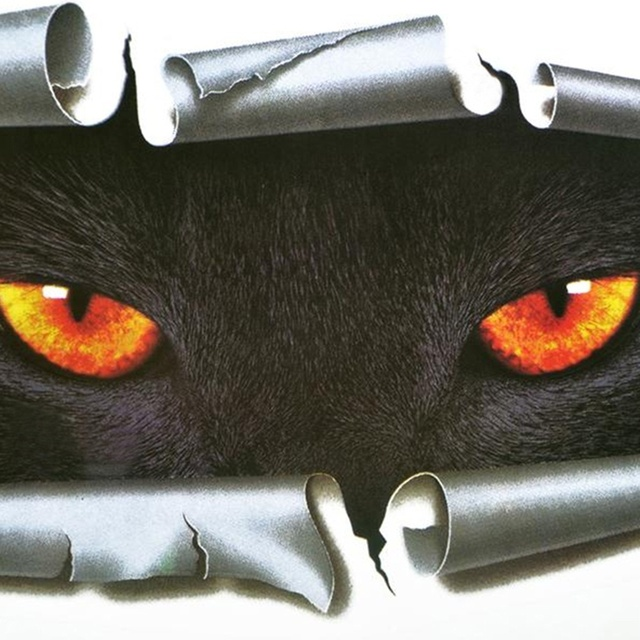 3D Car Styling Cat Eyes Sticker 10