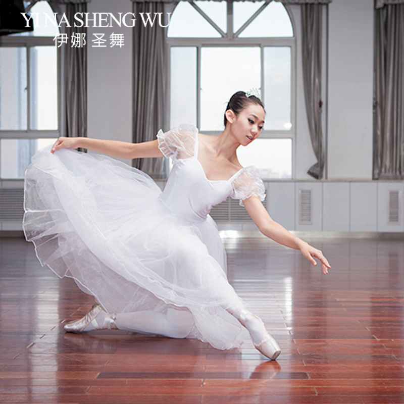 Adults Professional Tutu Ballet Swan Lake Costumes Girls Ballet Tutu Skirt Puff White Classic Ballet Dress Ballet Dance Costumes