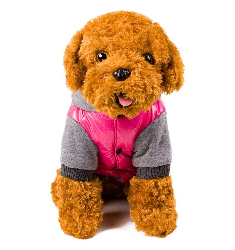 12 dog clothing
