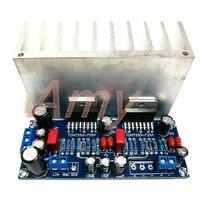 Free Shipping TDA7293 BTL Official Standard 170W Mono Amplifier Circuit Design Original IC With Heatsink