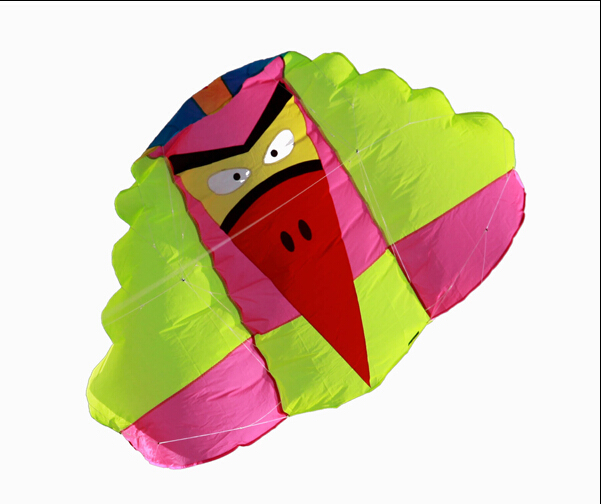 New Arrive  Outdoor fun Sports Software  Kite / Traction  Kites With Handle and Line Good Flying