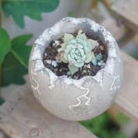 Egg design concrete pot mold Flower pot planter moulds 6*6cm