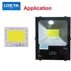 LED Lamp 220V COB Chip overvol