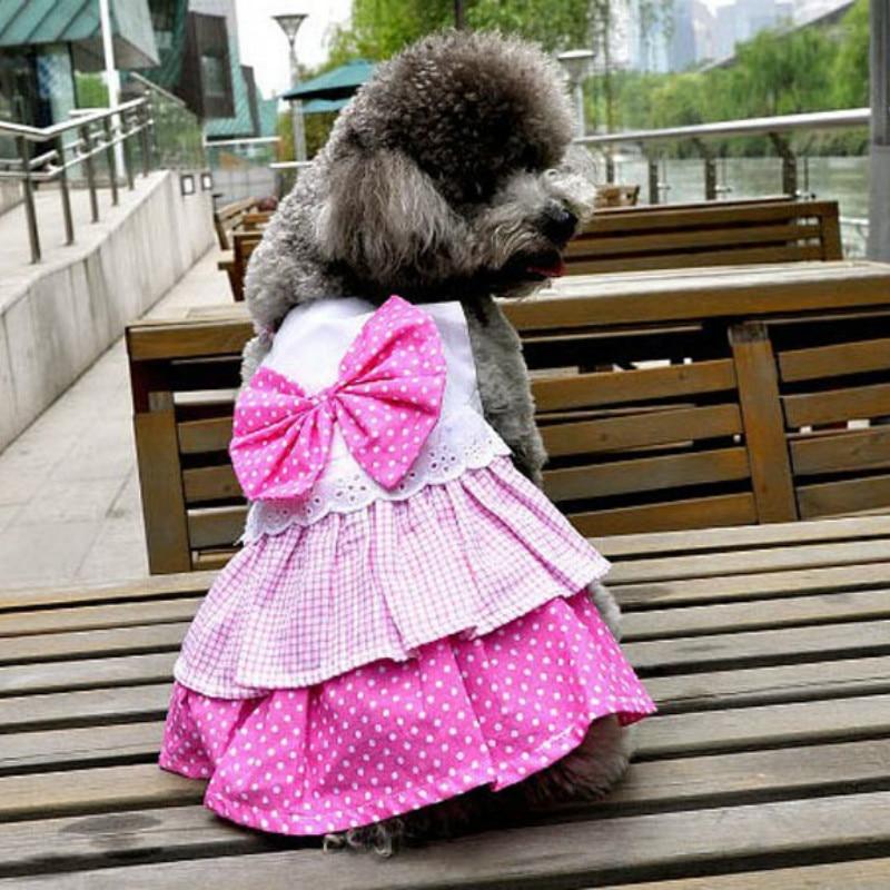 Bonito Traje Del Vestido De Boda Del Perro Colección de Imágenes ...