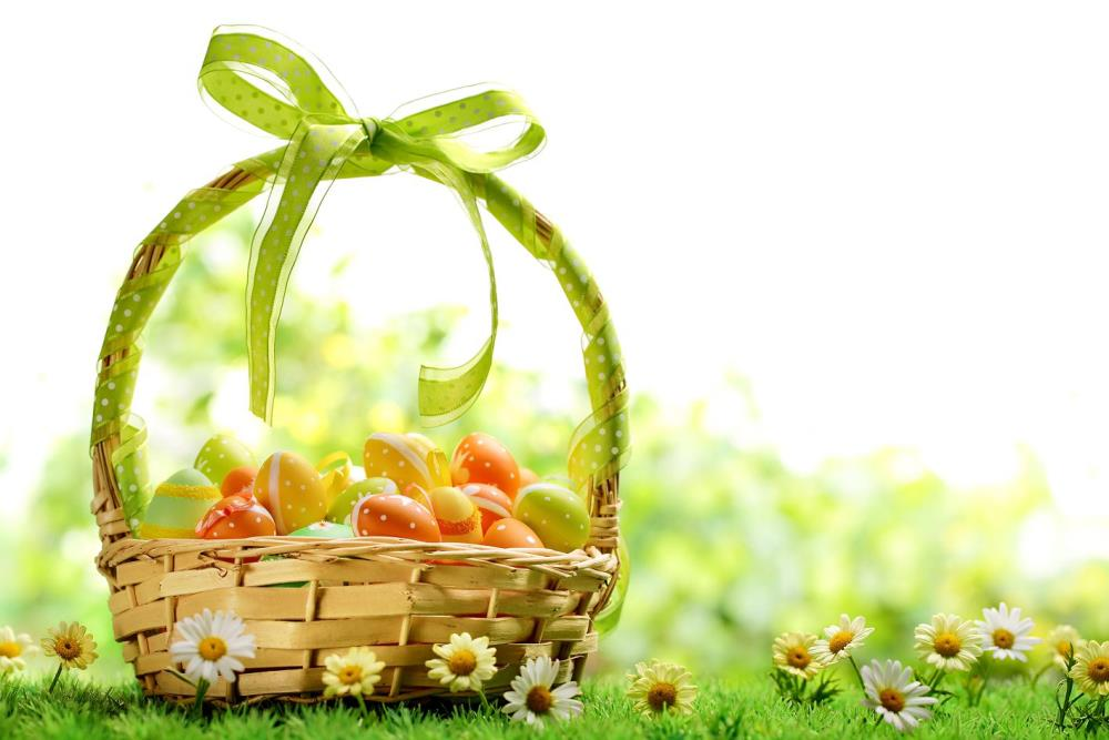 Easter Photography Backdrops Eggs Sunny Meadow Photography Studio Easter Day Zj