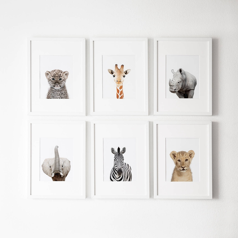 Photography Posters Decor Painting-Pictures Nursery-Decoration Canvas Art Wall-Art Animals