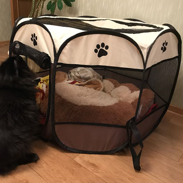 Portable Folding Pet tent Dog House Cage Dog Cat Tent Playpen Puppy Kennel Easy Operation Octagon Fence in Houses Kennels Pens from Home Garden