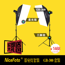 NiceFoto studio flash 300w photography light set clothes portraitist softbox gb-300 set